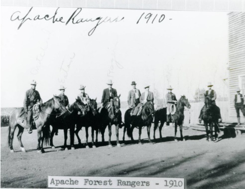 old photo Apache National Forest History horses